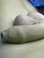 Twink Wanks His Long Uncut Dick